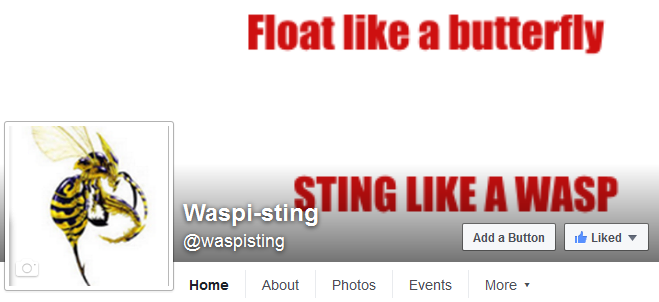waspipagesnip
